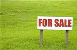 This land is located at Festac Town 6 Avenue corner piece