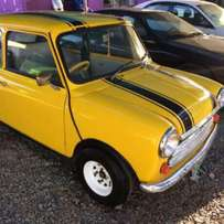 Beautiful Mini