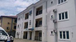 Executive 2bedroom flat with federa light At Peter Odili PH