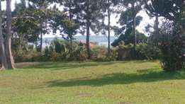 Lake view land for sale 98 dec