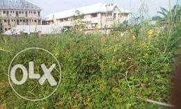 10 plots at Igbariam for sale