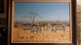 Zebra oil painting