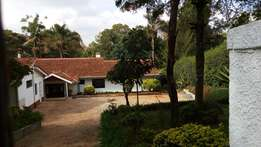 Loresho: Delightful 4Bedroomed Bungalow for rent.