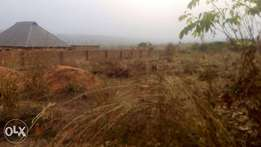 Land for Sale in Abor-Nkpor, Anambra State.