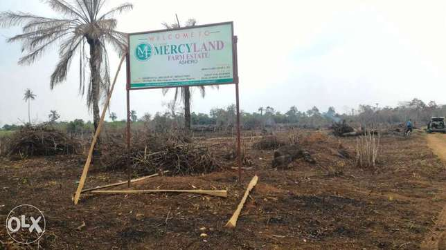 Affordable 3600 sqm Farm Land for sale at 700k Amuwo Odofin - image 1