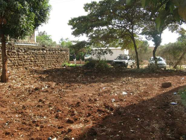 40 x 80 commercial plot in Ruiru Town Ruiru - image 2