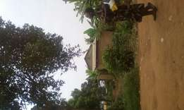 Land with a house on Entebbe high way