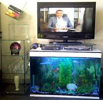 TV Stand aquariums (white)