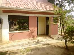 Pay without regretting 2 bedroom house for rent in Kiira at 300k