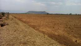 Selling prime Land 5 acres