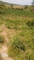 muranga ithanga 1000 acres land for sale.