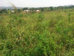 A u tired of renting and u want to cheap plot with landtittle on table