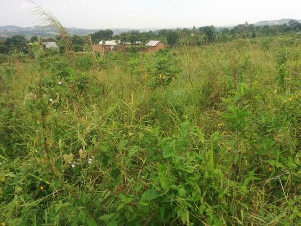 A u tired of renting and u want to cheap plot with landtittle on table Kampala - image 1