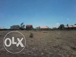50x100 plot in kamulu,1km from the road.900,000ksh with title