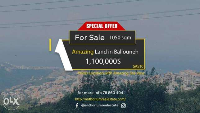 Prime Location Land in Ballouneh In An Amazing Neighborhood with View