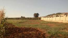 Lubowa 25 decimals for sale. developed area