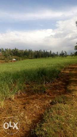 15acre land on sale in Pala,kabuoch,20km off Rongo town.160K per acre Kamenya - image 2