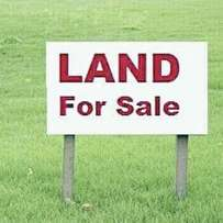 Over 5000 sqm land along International Airport Road, Ikeja.