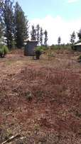 1/4 acre shamba for sale