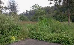 Ruaka Old Limuru Rd 3/4 Acre Plot on Sale