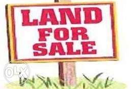 Land 4 Sale at Utuama Udu Road 100\90 which is almost 2 plots