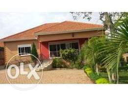 3bedroom bungalow executive house for rent in kiwatule