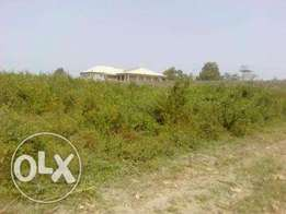3.5 Hectares of Abuja Agricultural Farmland for Sale