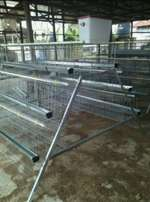 120 Capacity Poultry Cage Dip-Hot galvanized