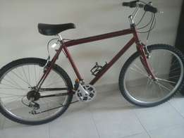 Avalanche Mountain Bike for sale urgent