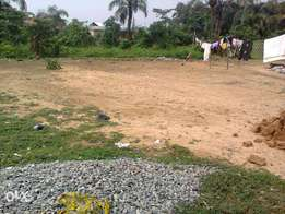 1 Plot of Land Near an Express Road in Ikorodu