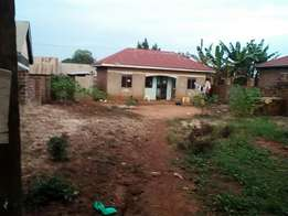 Best deal of the year. Newly built house with land title for sale 55m