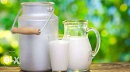 Goat Milk Available
