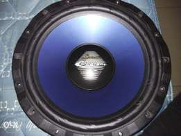 12 inch Sub woofer for R300