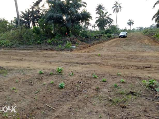 1-100 plots of already developing lands for sale in Portharcourt Obio/Akpor - image 2