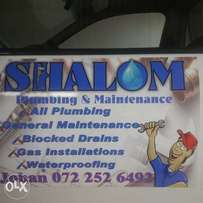 All plumbing,painting and general maintenance