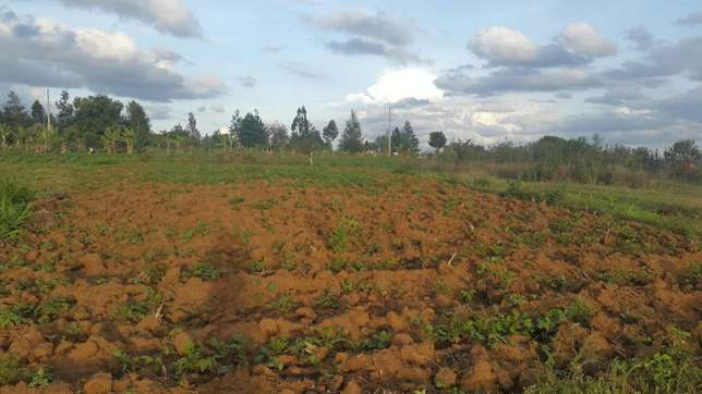 1/4 plot near tarmac in kikuyu kamangu town at 2.4m negotiable Kikuyu T-Ship - image 3