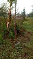 50x100 for sale in Nyeri.