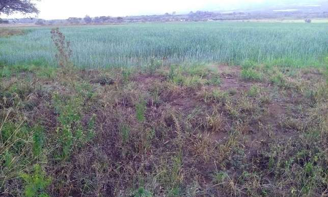 Land for sale in Bahati (6 acres ) Nakuru East - image 4