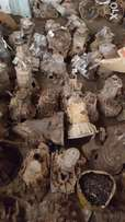 Gearbox's for sale
