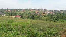 50*100ft plots in Namugongo Jjogo