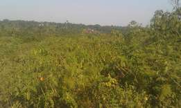 Hot plot of 100ft*50ft in mukono namumila at 14m