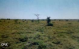 Plots on sale in Kitengela, Kijiado County
