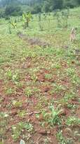 Prime land in karen,6 acres. Serious buyers only