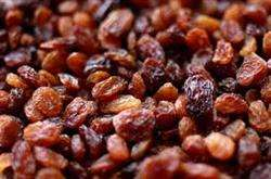 Fresh Iranian raisins