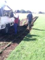 Farm Fresh Instant Lawn Delivered& Installed For R30/Sqm Call us