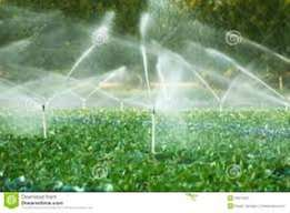 Irrigation Borehole