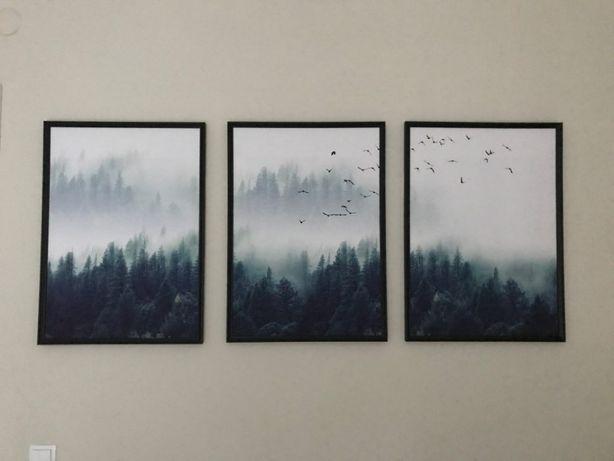 Jodły Las Obraz Na Płótnie Zestaw 3 Sztuki 50x70 Plakat