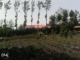 1/8 acre plot for sale 120m from kiserian rongai road