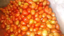 Tomatoes for SALE SALE!