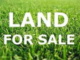 20acres opp NICON town after Jakande (Sandfilled & Fenced)